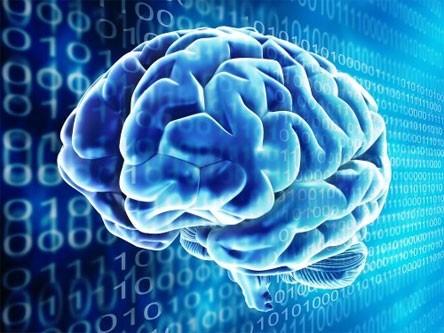 Как должен быть организован нейронный компьютер